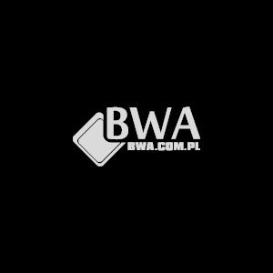 Wyposażenie sklepu monopolowego - BWA