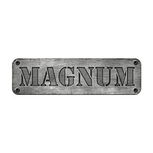 Wieczór kawalerski w Trójmieście - Magnum Arena