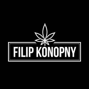 Super Lemon Haze Susz Konopny - Filip Konopny